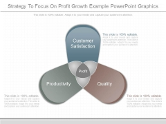 Strategy To Focus On Profit Growth Example Powerpoint Graphics