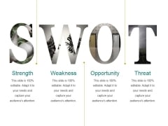 Strength Ppt PowerPoint Presentation Ideas