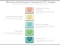 Structure And Services Framework Ppt Images