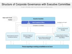 Structure Of Corporate Governance With Executive Committee Ppt Infographic Template Infographic Template PDF