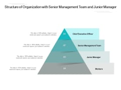 Structure Of Organization With Senior Management Team And Junior Manager Ppt PowerPoint Presentation Slides Diagrams PDF