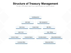 Structure Of Treasury Management Ppt PowerPoint Presentation Summary Slide Download