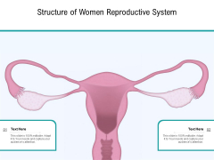 Structure Of Women Reproductive System Ppt PowerPoint Presentation Gallery Outfit PDF