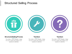 Structured Selling Process Ppt PowerPoint Presentation Rules Cpb