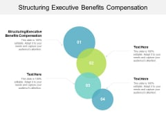 Structuring Executive Benefits Compensation Ppt PowerPoint Presentation Styles Graphics Example Cpb
