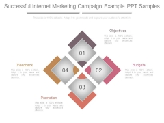 Successful Internet Marketing Campaign Example Ppt Samples