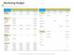 Successful Mobile Strategies For Business Marketing Budget Inspiration PDF