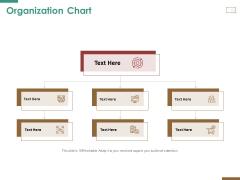 Successful Strategy Implementation Process Organization Organization Chart Microsoft PDF
