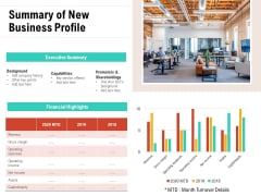 Summary Of New Business Profile Ppt PowerPoint Presentation File Example Topics PDF
