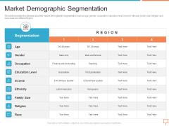 Summary Of Regional Marketing Strategy Market Demographic Segmentation Diagrams PDF