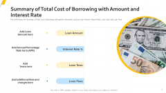 Summary Of Total Cost Of Borrowing With Amount And Interest Rate Formats PDF