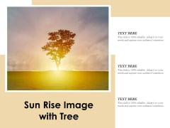 Sun Rise Image With Tree Ppt PowerPoint Presentation Infographic Template Vector PDF