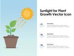 Sunlight For Plant Growth Vector Icon Ppt PowerPoint Presentation File Clipart PDF
