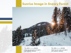 Sunrise Image In Snowy Forest Ppt PowerPoint Presentation Styles Slideshow PDF