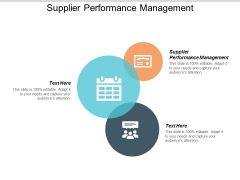 Supplier Performance Management Ppt PowerPoint Presentation File Themes Cpb