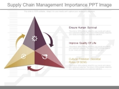 Supply Chain Management Importance Ppt Image