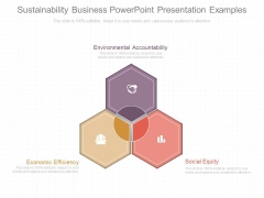 Sustainability Business Powerpoint Presentation Examples