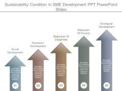 Sustainability Condition In Sme Development Ppt Powerpoint Slides