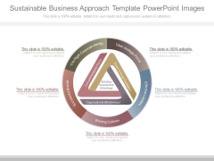 Sustainable Business Approach Template Powerpoint Images