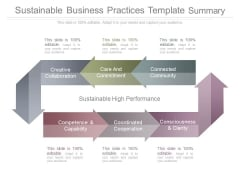 Sustainable Business Practices Template Summary