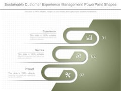 Sustainable Customer Experience Management Powerpoint Shapes