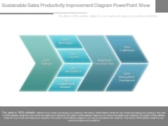 Sustainable Sales Productivity Improvement Diagram Powerpoint Show
