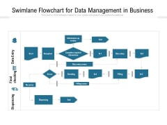 Swimlane Flowchart For Data Management In Business Ppt PowerPoint Presentation Gallery Layout Ideas PDF