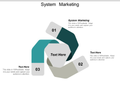 System Marketing Ppt PowerPoint Presentation Gallery Graphic Tips Cpb