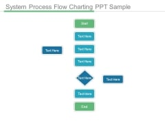 System Process Flow Charting Ppt Sample