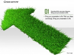 Stock Photo Arrow Made With Green Grass PowerPoint Slide