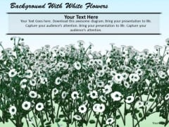 Stock Photo Background With White Flowers PowerPoint Template