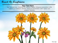 Stock Photo Bunch Of Sunflowers PowerPoint Template