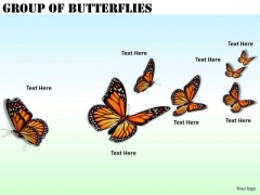 Stock Photo Business Strategy Consultant Group Of Butterflies Pictures