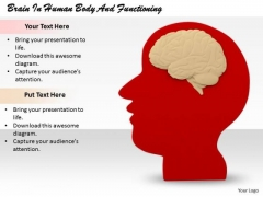 Stock Photo Business Strategy Review Brain Human Body And Functioning Pictures Images