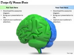 Stock Photo Business Strategy Review Design Of Human Brain Images