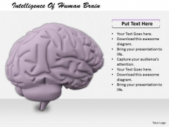 Stock Photo Business Strategy Review Intelligence Of Human Brain Clipart Images