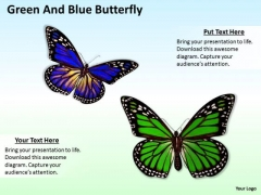 Stock Photo Green And Blue Butterflies Nature Theme PowerPoint Slide
