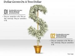 Stock Photo Illustration Of Dollar Plant PowerPoint Slide
