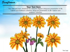 Stock Photo Illustration Of Sunflowers For Nature Pwerpoint Slide