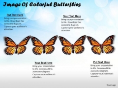 Stock Photo Image Of Colorful Butterflies Ppt Template