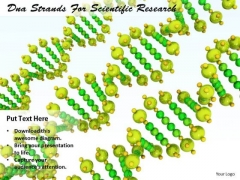 Stock Photo Internet Business Strategy Dna Strands For Scientific Research Image