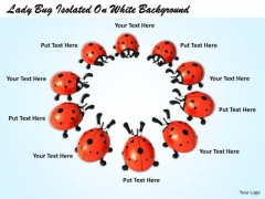 Stock Photo Lady Bug Standing In Circle PowerPoint Slide