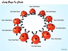 Stock Photo Lady Bugs In Circle PowerPoint Template