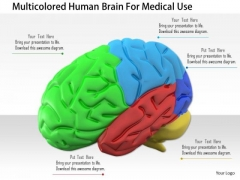 Stock Photo Multicolored Human Brain For Medical Use PowerPoint Slide