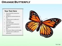 Stock Photo Orange Butterfly On Blue Background PowerPoint Slide
