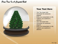 Stock Photo Pine Tree In A Crystal Ball PowerPoint Slide