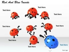 Stock Photo Red And Blue Insects PowerPoint Template