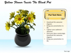 Stock Photo Yellow Flowers Inside The Black Pot PowerPoint Slide