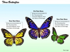 Stock Photo Yellow Purple And Green Butterflies Pwerpoint Slide