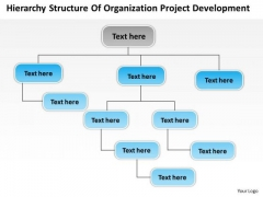 Structure Of Organization Project Development Ppt Business Plan Draft PowerPoint Templates
